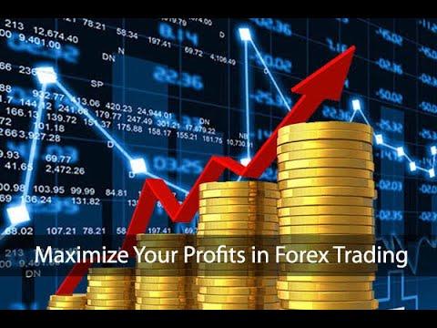 plus-minus-profit-trading-forex---story-forex- -harun-id