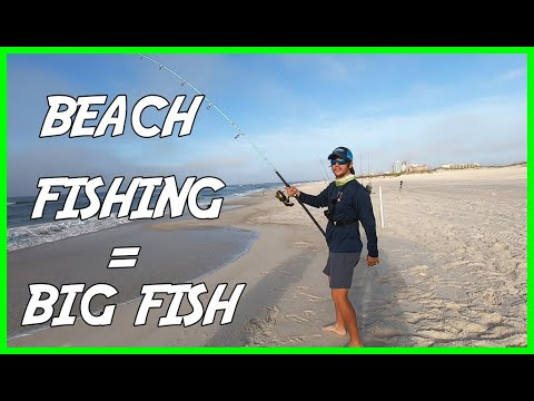 BIG FISH From The Beach While Pompano Fishing | Orange Beach, Alabama Surf Fishing
