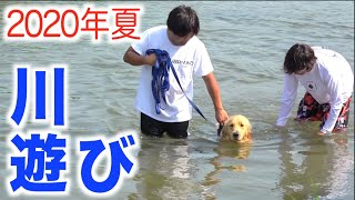 【初公開】レトリバーまるくん、初めての犬かき!!