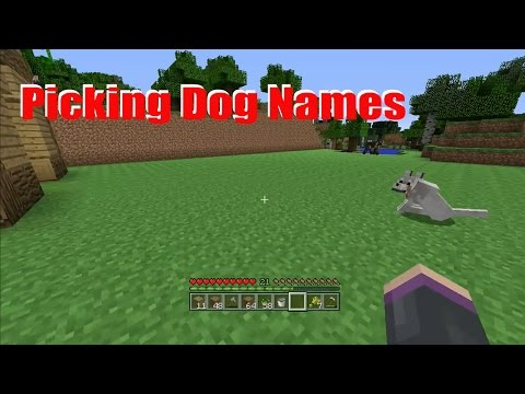 Picking Dog Names | Minecraft Survival #6