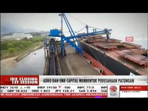 Akuisisi Kestrel, Adaro Incar Pinjaman USD1,5 Miliar