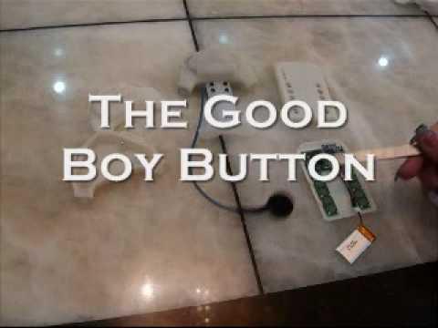 The good boy button