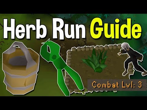 How to Complete Your First Herb Run From Scratch! A Beginner Guide to a Basic Herb Run![OSRS]