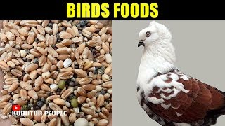 Pigeon Food | Best Pigeons Mix Feed & Food | Bird Foods Collection | Pigeon Video | Bangladesh | #36