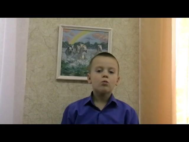 Изображение предпросмотра прочтения – ДмитрийСтародубов читает произведение «Стрекоза и Муравей» И.А.Крылова
