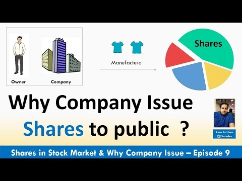 What is Share in Stock market | Why companies Issue Shares to Public (IPO) | Episode 9