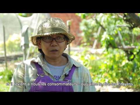 Vivre l'habitat en permaculture