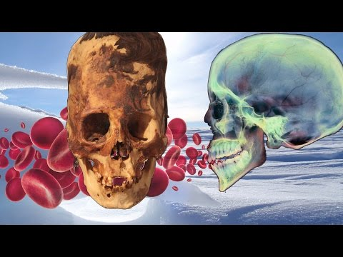 Human-Alien Bloodlines, Antarctica Mysteries & the Missing Missing Link with Brad Olsen