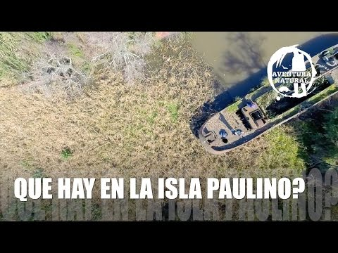 Que hay en la isla Paulino? - What is on the island Paulino?