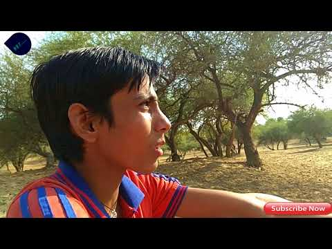 swach bharat Rajasthani comedy funny video by PK kandhal pkt