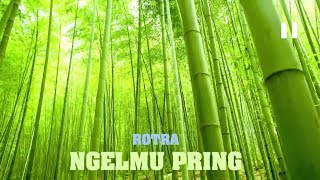 Download Video Rotra - Ngelmu Pring [Makna+Lirik+Terjemahan] MP3 3GP MP4