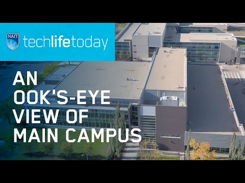 Techlifetoday: An Ook's-eye View Of Main And Spruce Grove Campuses