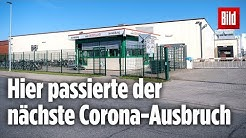 Nächster Corona-Ausbruch mit 23 Infizierten bei Wiesenhof |Schlachterei, Oldenburg