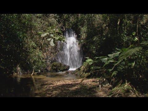 Parques E áreas Protegidas Da Mata Atlântica Nas Cidades Brasileiras