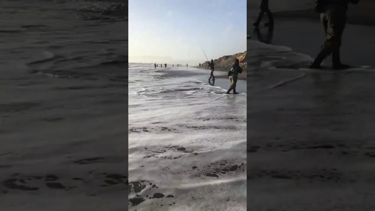 Striper Fishing On Ocean Beach Sf Youtube
