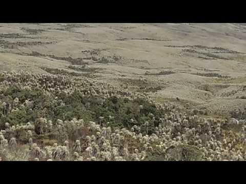 Nevado Del Ruiz Travel Video