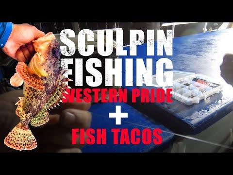 First Sculpin Trip Of 2020 - Catch & Cook - Western Pride - Davey's Locker Sportfishing