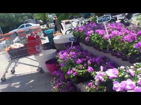 STOFFELVLOGS  vlog 138 landmarkt schellingwoude