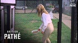 Stray Dog (1968)