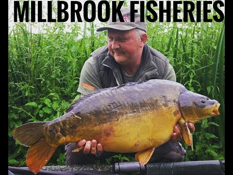 MILLBROOK FISHERIES *CARP FISHING*