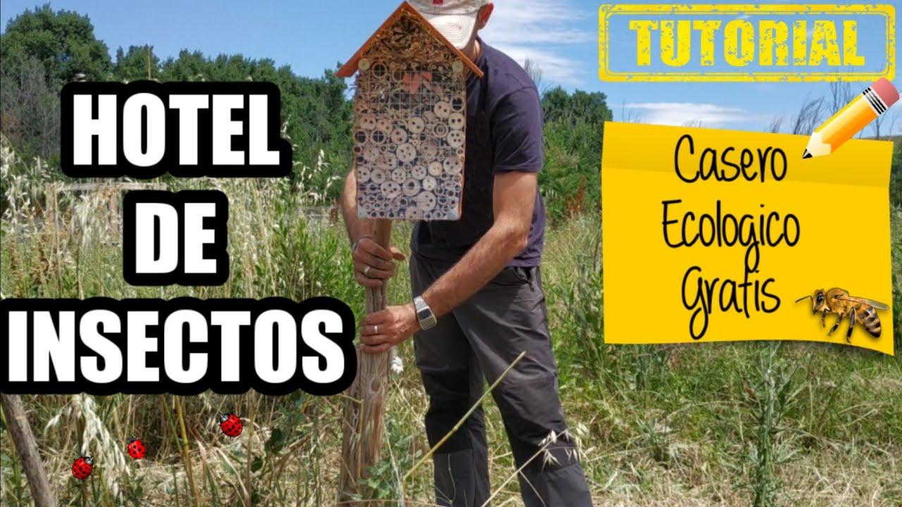 Como Hacer un Hotel De Insectos En El Huerto ECOLÓGICO | Aumenta tu cosecha con una Caja de insectos