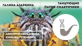 Галина Азаркина - Танцующие пауки-скакунчики
