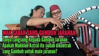 Download Video TANYA KEPADA GAMBUH JARANAN MP3 3GP MP4