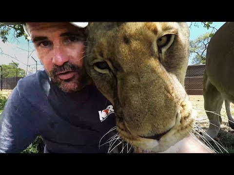 lion-cuddles-|-the-lion-whisperer