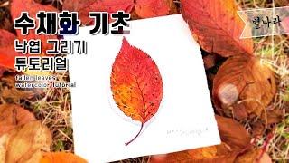 수채화 기초낙엽 잎사귀 그리기 튜토리얼별나라⭐그림강좌