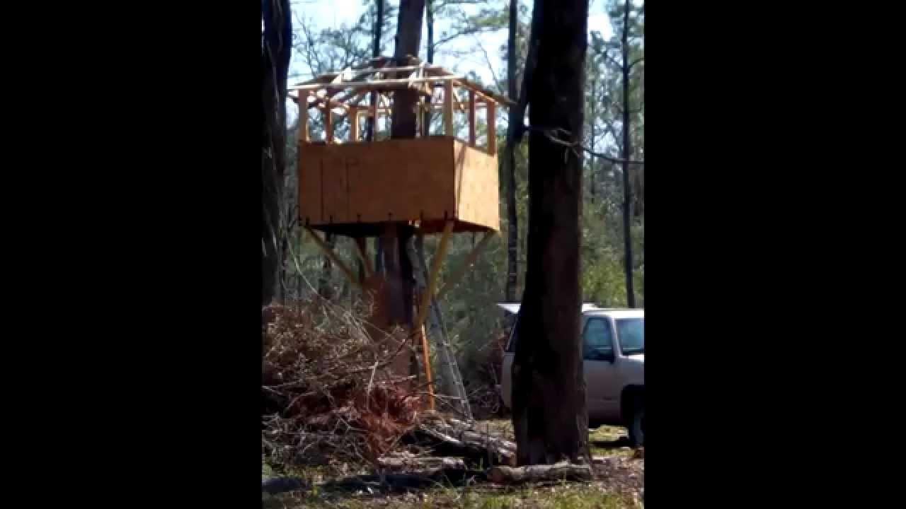 How To Build A Treehouse Deer Stand Nature Observation