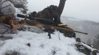 Long Range Hunting Video Montage
