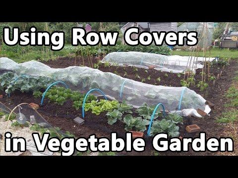 Using Row Covers in Vegetable Garden – fleece, enviromesh, veggiemesh, insect and bird netting