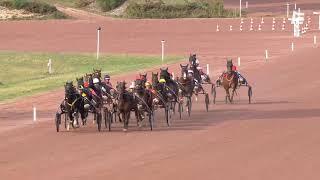 Vidéo de la course PMU PRIX DE L'HIPPODROME DE BEAUMONT-DE-LOMAGNE