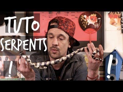 TUTO MON PREMIER SERPENT - TOOPET