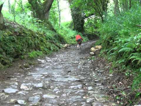 Fourteen Days in June: Our Camino de Santiago, 2014