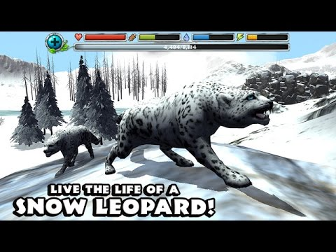 Snow Leopard Simulator Android Ios Gameplay Trailer