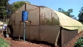 Kaizengreen eppisode 4 Urban farming in zimbabwe
