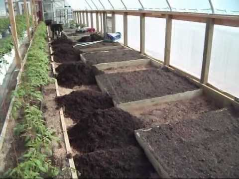 Building Greenhouse Raised Beds