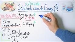 Schlankmacher Eiweiß! 3 unschlagbare Vorteile in 3 Minuten! ZurStrandfigur.com