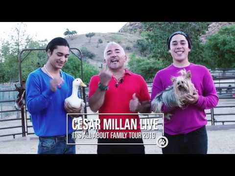 Cesar millan dating 2019