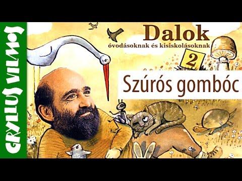 Gryllus Vilmos: Szúrós gombóc (gyerekdal) videó letöltés