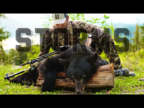 Storms | an Archery Bear Hunt short Film