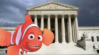 Case Of The Missing Fish Goes To Supreme Court