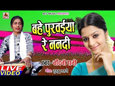 Chadani Rani_का सुपरहिट गाना_बहे पुरवाईया रे ननदी