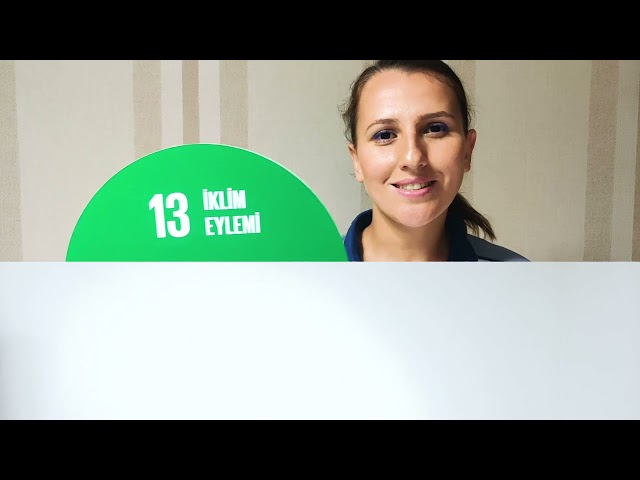 Young SDG Innovators Taking Action on the Global Goals