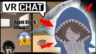 SHARK TRIES TO NOM MY TOES NANI | Vrchat Funny Moments