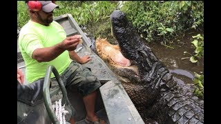 super-awesome-airboat-ride-through-the-swamps-of-louisiana