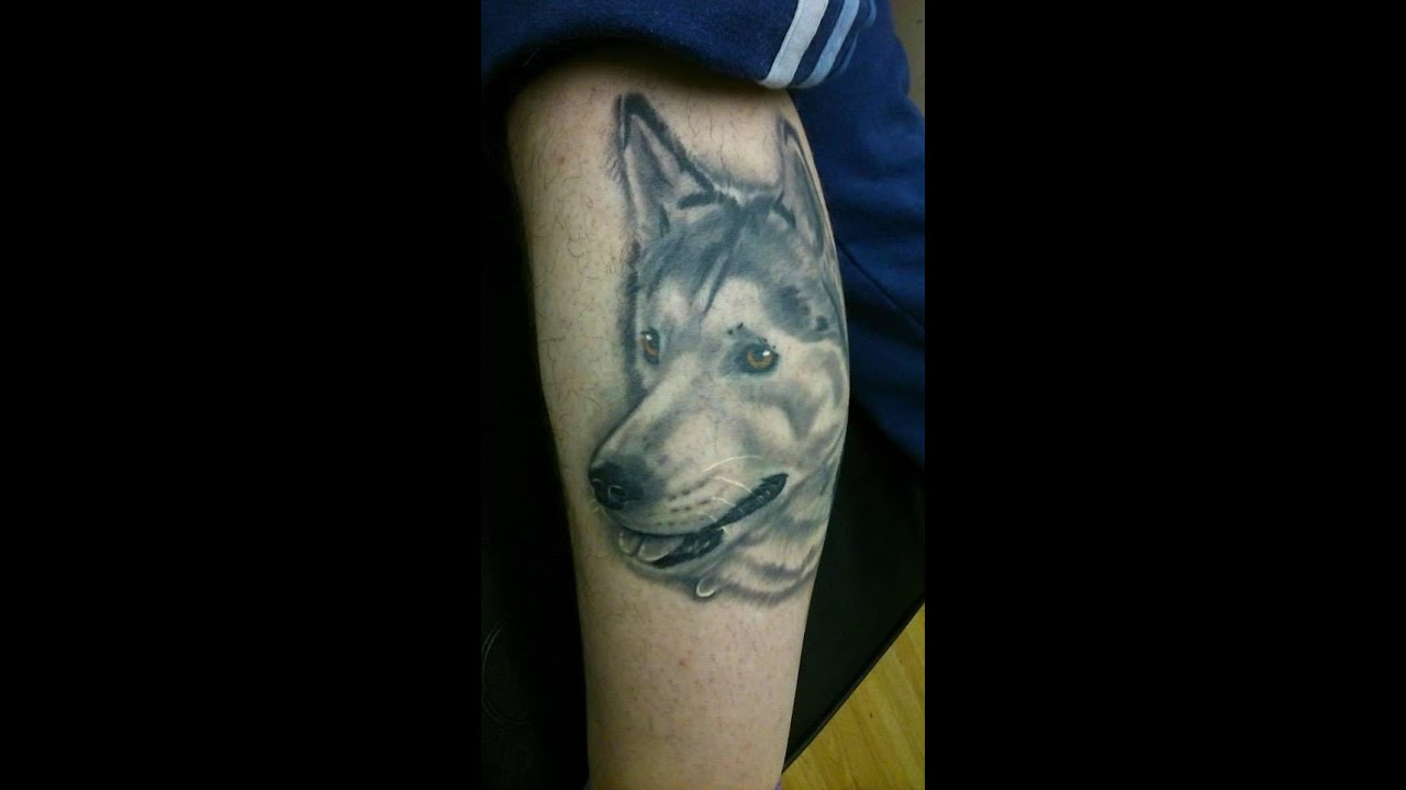 0307eae60acd9 Husky tattoo portrait by B33 @ beetattooed stockport - YouTube