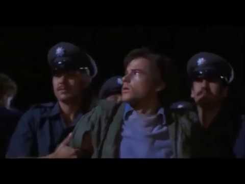Midnight Express (1978) Subtitles - SUBDL