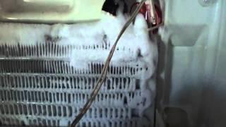 видео Холодильник не морозит. Находим проблему [Видео 1]